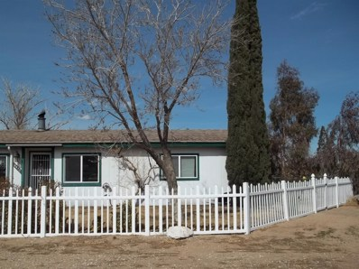 6670 Mcintosh Court, Phelan, CA 92371 - MLS#: 498148