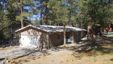 23404 Flume Canyon Drive, Wrightwood, CA 92397 - MLS#: 500059