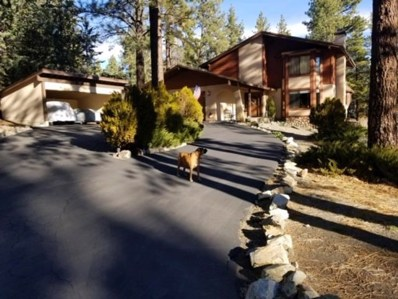 1152 Twin Lakes Drive, Wrightwood, CA 92397 - MLS#: 508986