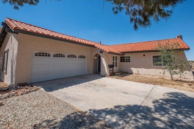 26702 Lakeview Drive, Helendale, CA 92342 - #: 512084