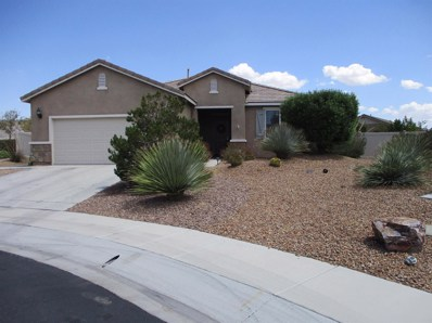 11071 Phoenix Road, Apple Valley, CA 92308 - MLS#: 513945