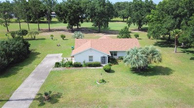 253 E Falconry Court, Hernando, FL 34442 - #: 772185