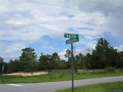 3873 W Baton Lane, Citrus Springs, FL 34433 - #: 775944
