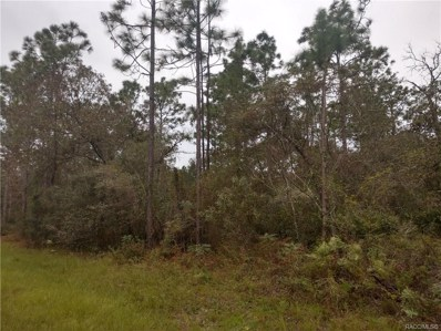 7116 N Treehaven Terrace, Citrus Springs, FL 34433 - #: 777912