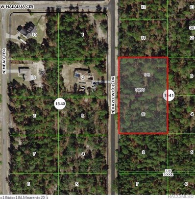 6291 N Hazelwood Drive, Citrus Springs, FL 34433 - #: 777966