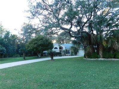 30 Lemington Court, Homosassa, FL 34446 - #: 778976
