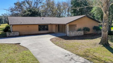 5 Bumelia Court, Homosassa, FL 34446 - #: 780028