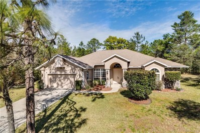 4317 W Gorge Lane, Beverly Hills, FL 34465 - #: 780293