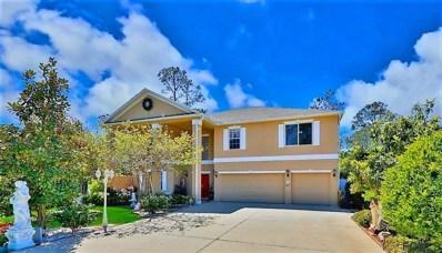 3 Zorro Ct, Palm Coast, FL 32164 - MLS#: 237276