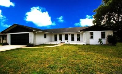 58 Wellstone Drive, Palm Coast, FL 32164 - MLS#: 237611