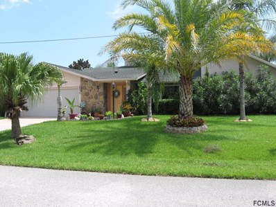 3 Clearview Ct S, Palm Coast, FL 32137 - MLS#: 241078
