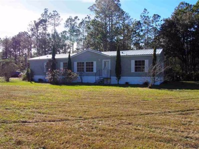 4300 Florence Court, Hastings, FL 32145 - #: 244570
