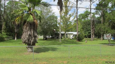 5920 Nutwood Ave, Bunnell, FL 32110 - MLS#: 251596