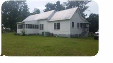 106 Trixie, Ray City, GA 31645 - MLS#: 114250