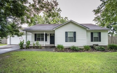 80 Beaver Street, Ray City, GA 31645 - MLS#: 115010
