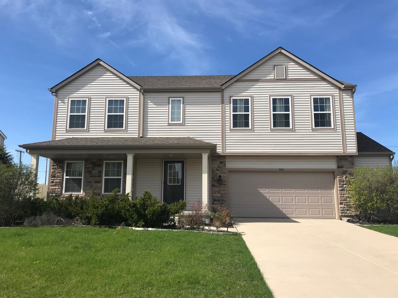700 E 113th Place, Crown Point, IN 46307 - #: 454620