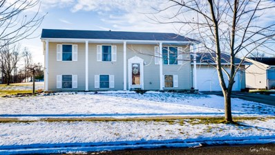 163 W 128th Avenue, Crown Point, IN 46307 - #: 467676