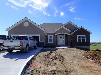 13944 Indian Ridge Street, Saint Joseph, MO 64505 - #: 2126742