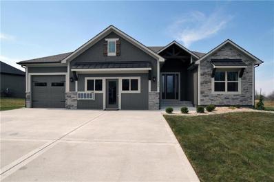 11602 Heritage Drive, Peculiar, MO 64078 - #: 2136567