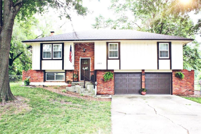 1303 Tracy Avenue, Excelsior Springs, MO 64024 - #: 2179029