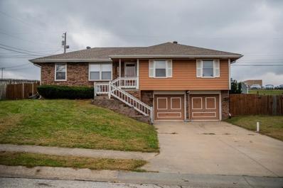 711 N Patton Street, Harrisonville, MO 64701 - #: 2193887