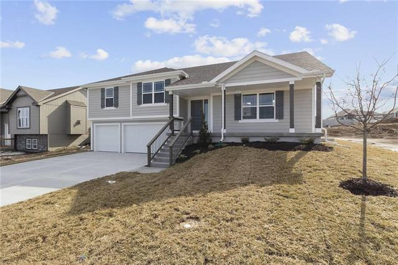1291 NW Hickorywood Court, Grain Valley, MO 64029 - #: 2351129