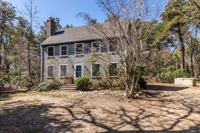 24 Pennywise Path, Edgartown, MA 02539 - MLS#: 21802770