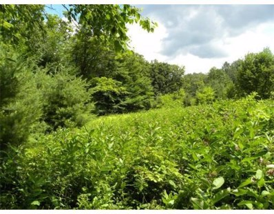Branch Hill Road, Heath, MA 01346 - MLS#: 71713690