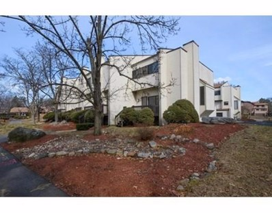 255 North Road UNIT 48, Chelmsford, MA 01824 - MLS#: 72288249