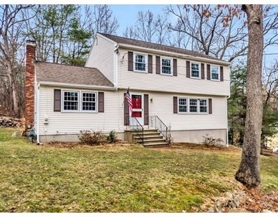 9 Minot Avenue, Acton, MA 01720 - MLS#: 72302395