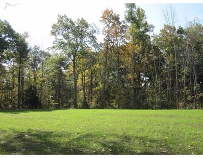Sam Cobb Lane, Princeton, MA 01541 - MLS#: 72316682