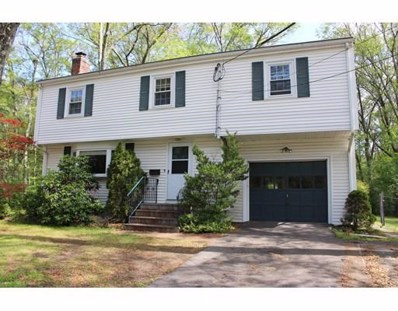 161 Mill St, Natick, MA 01760 - MLS#: 72370319
