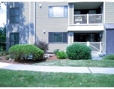 255 North Road UNIT 233, Chelmsford, MA 01824 - MLS#: 72376123