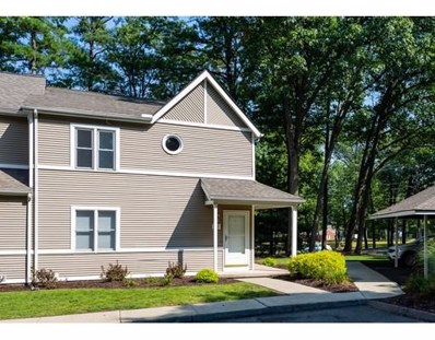 61 Abbey Memorial Dr UNIT 102, Chicopee, MA 01020 - MLS#: 72391855
