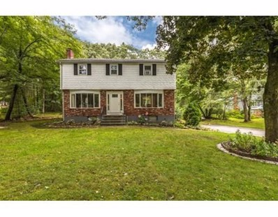 209 Concord Rd, Chelmsford, MA 01824 - MLS#: 72395173