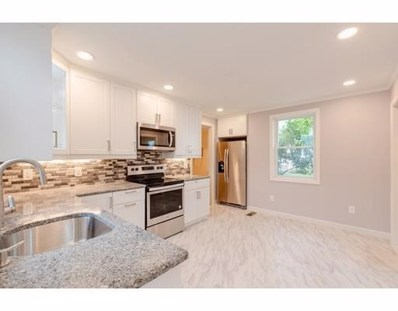 20 Chester Street UNIT 1, Watertown, MA 02472 - MLS#: 72399539