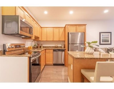 58 E Springfield St UNIT 1, Boston, MA 02118 - MLS#: 72402596