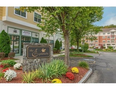 248 Main St UNIT 216, Hudson, MA 01749 - MLS#: 72408608