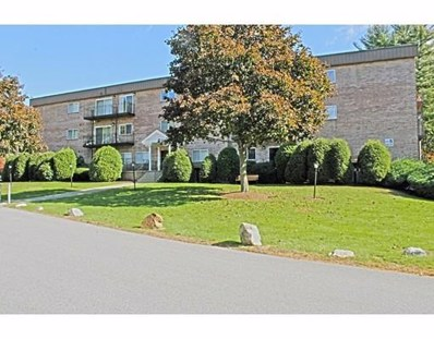 181 Littleton Rd UNIT 341, Chelmsford, MA 01824 - MLS#: 72416127