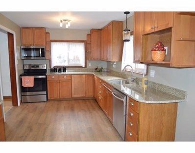 11 Healy Rd, Worcester, MA 01603 - MLS#: 72417660