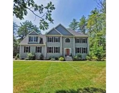 20 Old Mill Rd, Norfolk, MA 02056 - MLS#: 72435609