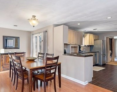 96 Lowther Rd, Framingham, MA 01701 - MLS#: 72440739
