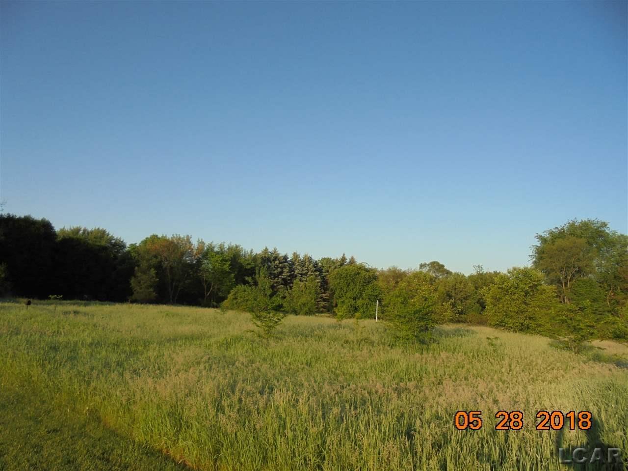 6000 Green Hwy BLK, Tecumseh (46043)