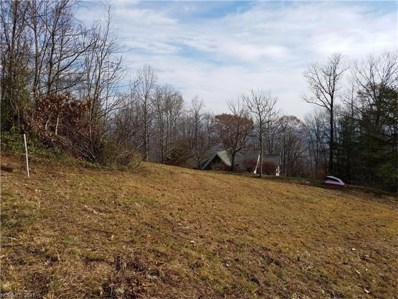 Spivey Mountain UNIT 2, Asheville, NC 28806 - MLS#: 3129516
