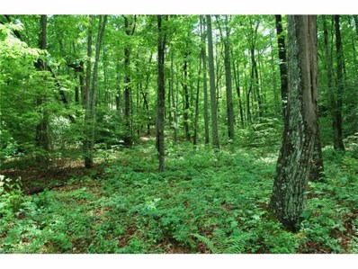 Reserve, Pisgah Forest, NC 28768 - MLS#: 3205610