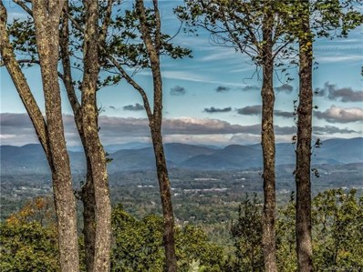 646 Pinnacle Mountain Road UNIT 60.5 ac>, Zirconia, NC 28790 - MLS#: 3209270