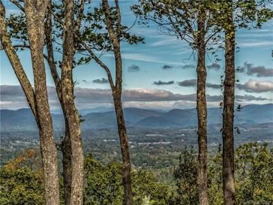 646 Pinnacle Mountain Road UNIT 60.5 ac>, Zirconia, NC 28790 - #: 3209270