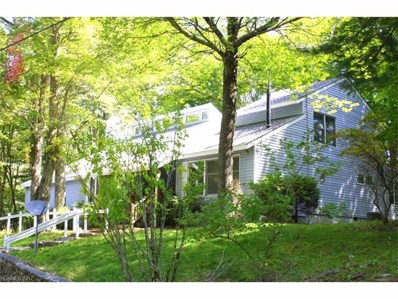 304 Hampton Gap Road UNIT 138+139, Mars Hill, NC 28754 - MLS#: 3272836