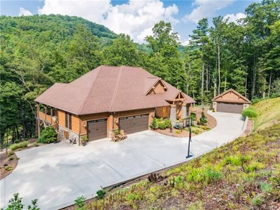 806 Merrills Cove Road, Asheville, NC 28803 - MLS#: 3279447