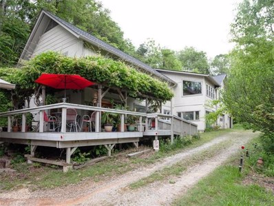 2 Lookout Road, Asheville, NC 28804 - MLS#: 3282359